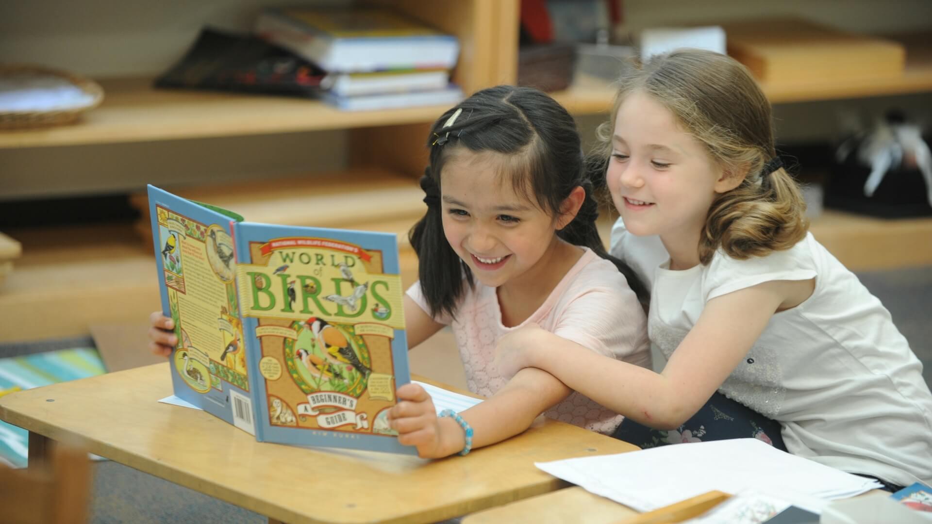 Hudson Montessori School Blog